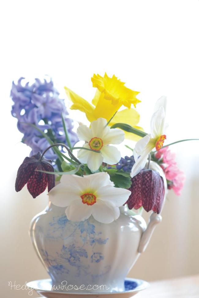 Edible spring flower arrangements google search welcome to my edible spring flower arrangements google search mightylinksfo
