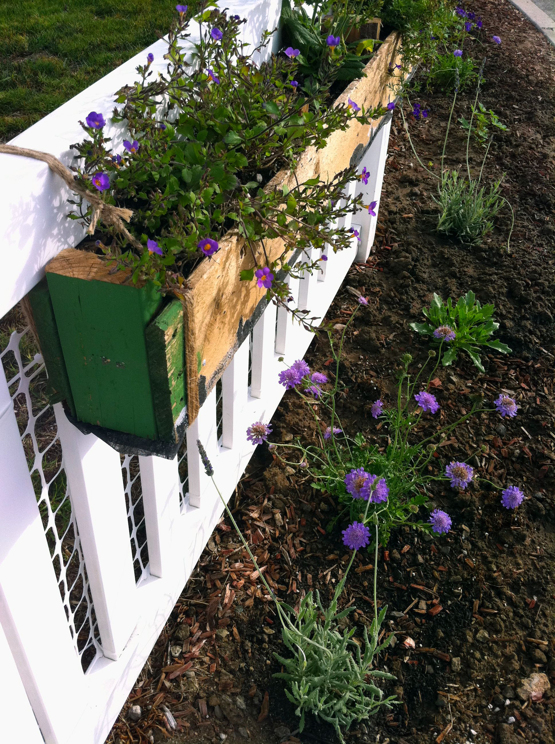 Wood pallet planter box - I like the rope holding it too ...