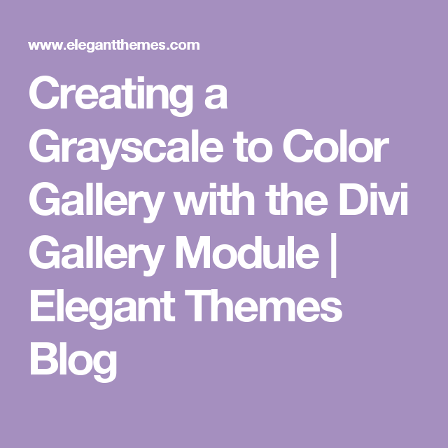 Creating a Grayscale to Color Gallery with the Divi Gallery