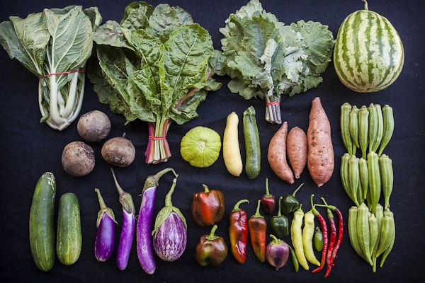 Johnson's Backyard Garden - Vegetable Guide   Backyard ...