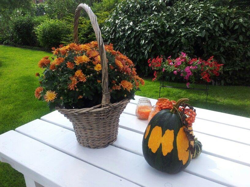 Bijna herfst op de Aukeshof