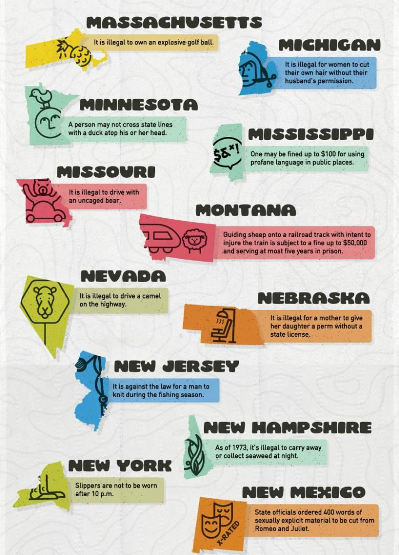 Is Your State Crazy? 50 Craziest Laws Across the United