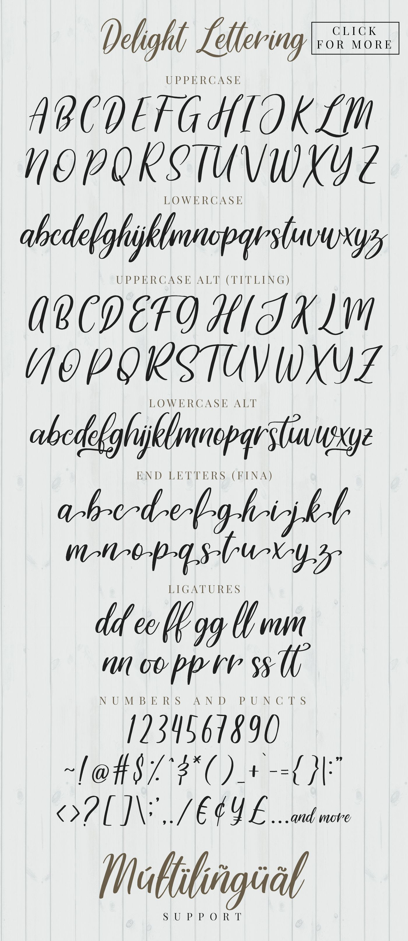Please Welcome Delight Lettering Bundle A Bunch Of Casual Hand Lettering Brush With Modern Calligraphy Style I Lettering Hand Lettering Hand Lettering Fonts