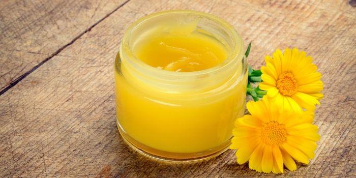 yellow calendula salve in jar with flower