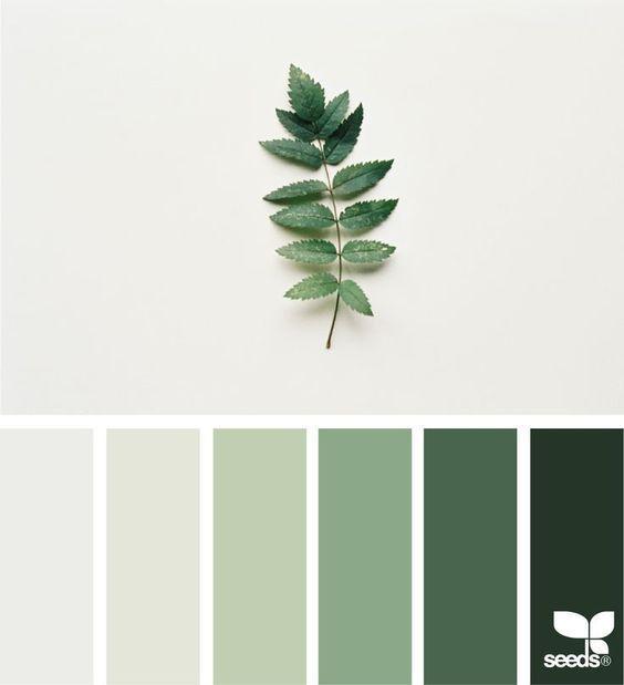 Wandfarbe Grün, Farbpalette Grau Und Bunte Designs
