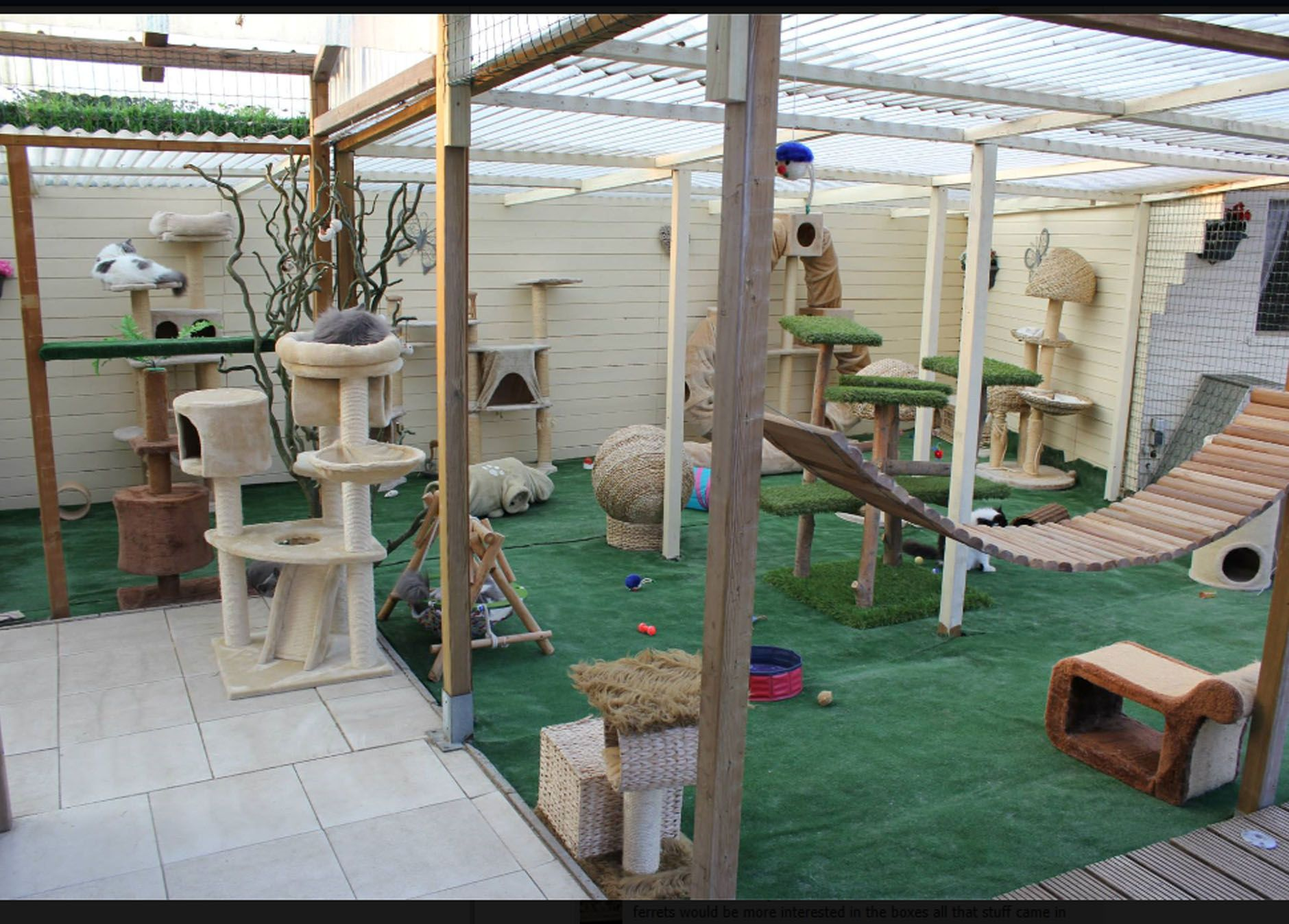 New Outdoor Cat Room I Want To Do This Some Day Con Imagenes