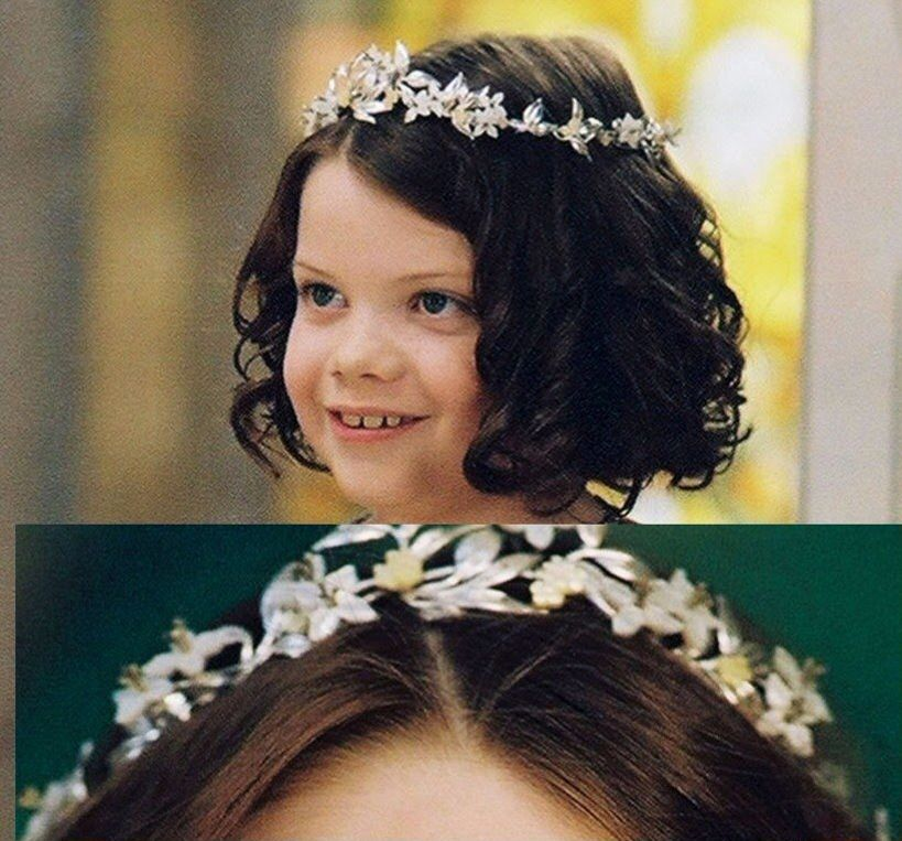Lion Witch The Wardrobe Crown If I Were Princess Or Queen