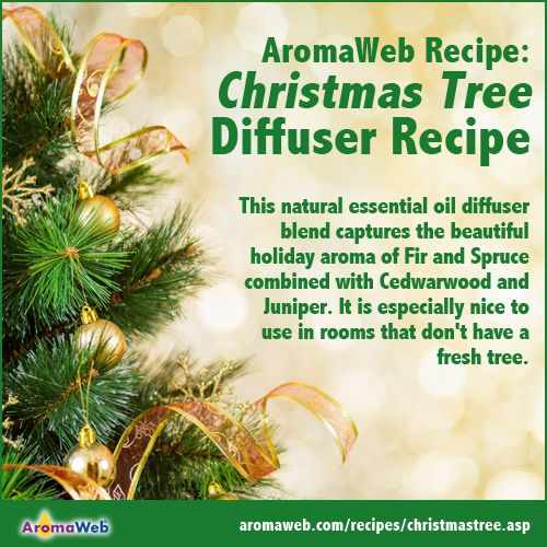 Christmas Tree Essential Oil Diffuser Blend Aromatherapy Recipes Essential Oil Diffuser Blends Diffuser Blends
