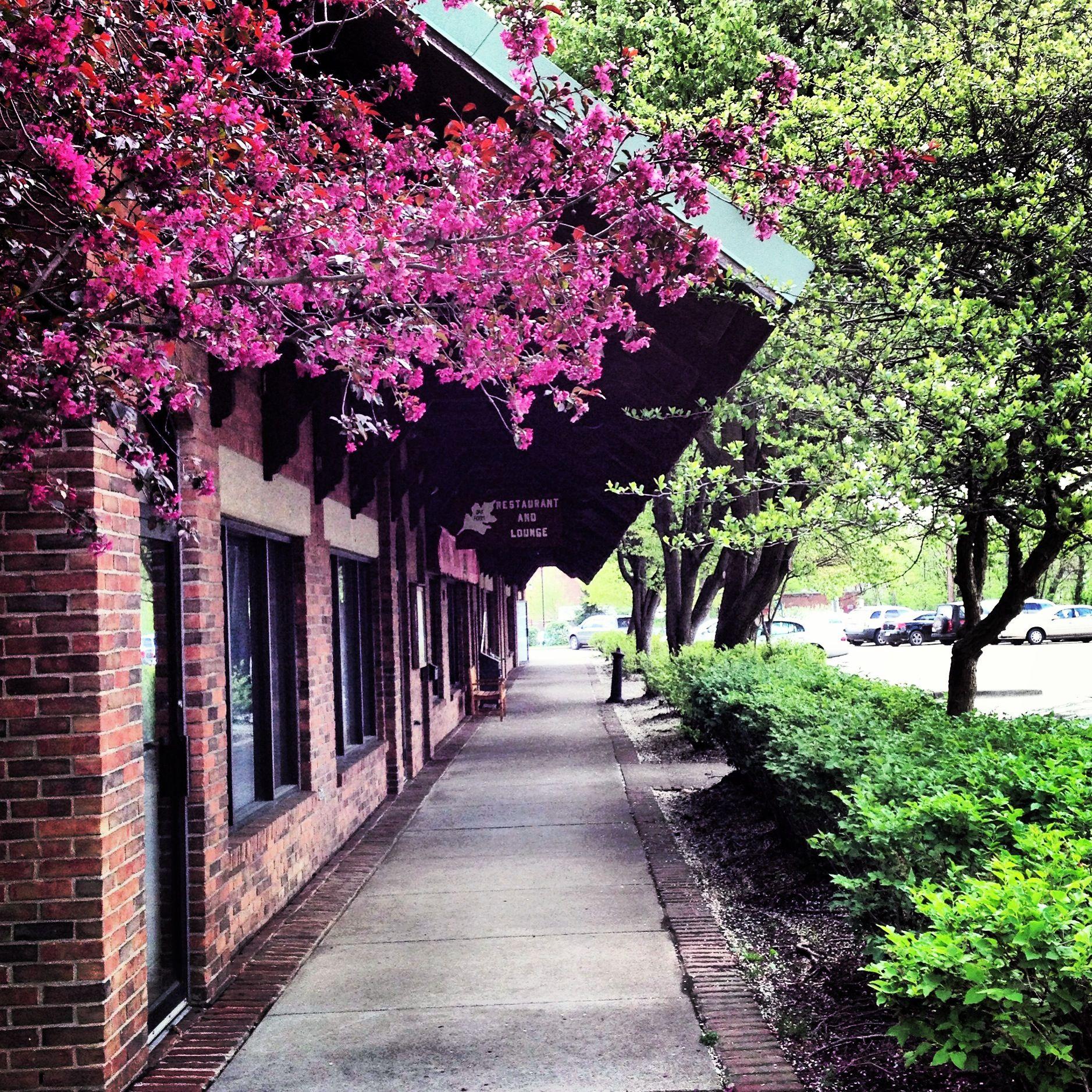 Spring Athens Ohio Athens Ohio Athens College Town