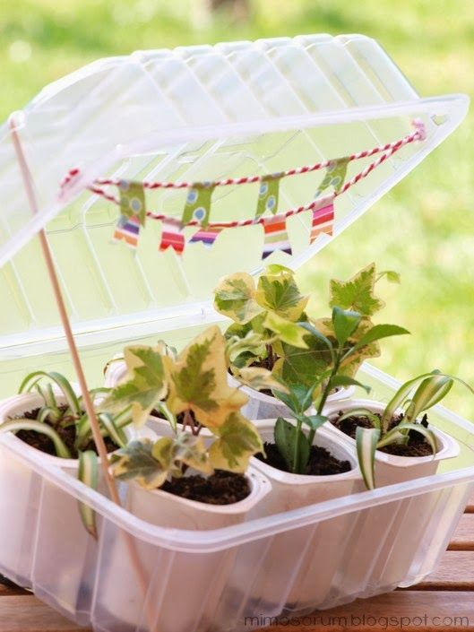 Mimosorum c mo hacer un invernadero casero diy make a homemade greenhouse gardening - Invernadero casero terraza ...