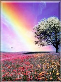 Colorful Nature Beautiful Nature Beautiful Rainbow Rainbow Waterfall