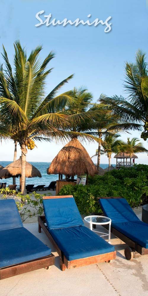 Resorts only riviera maya Best adults