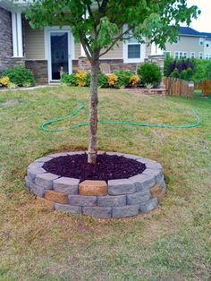tree slope with retaining wall