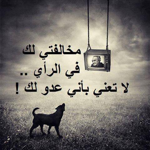 الاختلاف في الرأي لايفسد للود قضية Cool Words Arabic Love Quotes True Words