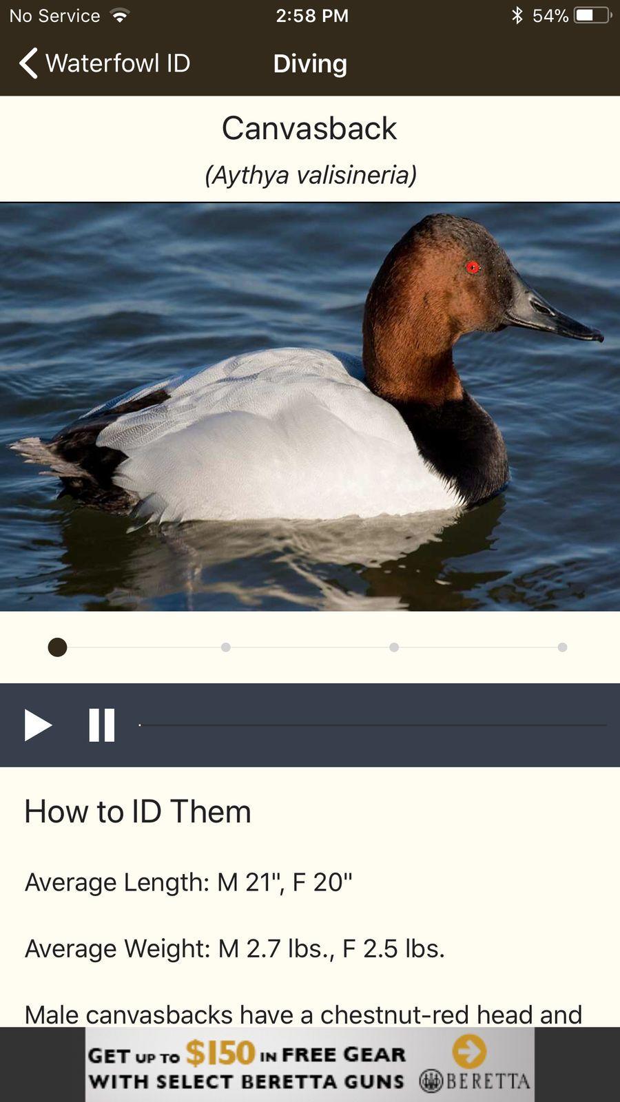 Ducks unlimited iosappsappentertainment ducks