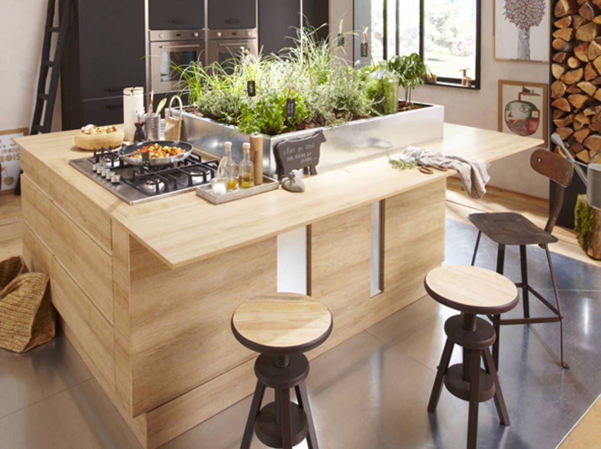 Disposez Des Plantes Aromatiques Au Milieu De Lîlot Central - Cuisiniere largeur 50 pour idees de deco de cuisine