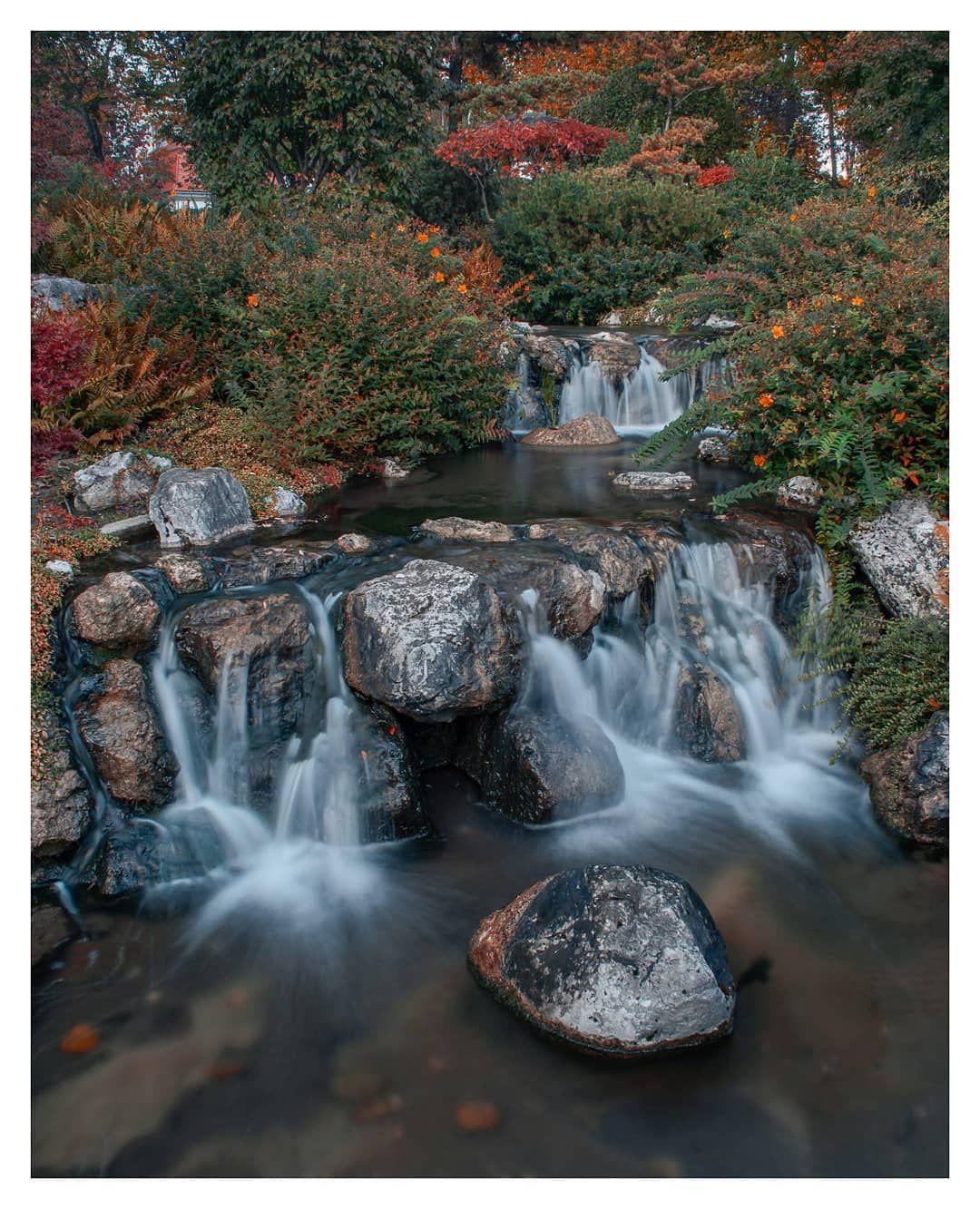 Setagaya Park Setagayapark Japanischergarten Garten Waterfall Herbst Autumn Nature Naturephotogra Vienna Park Waterfall Nature Photography