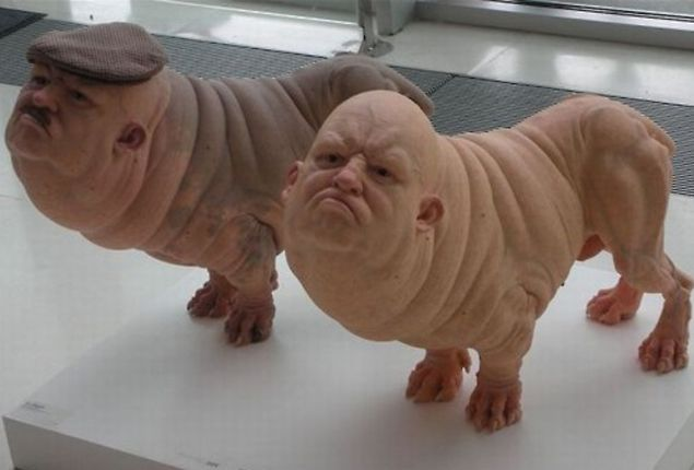 What A Pug Should Look Like If It Was A Human Google Search