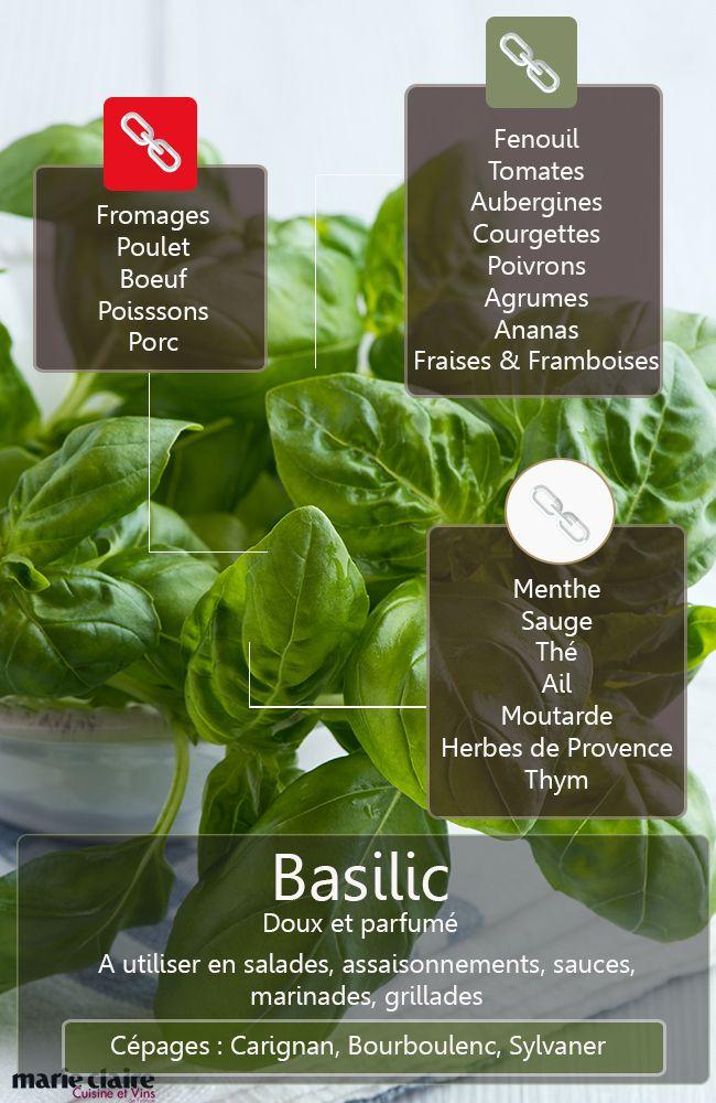 Cuisiner avec le basilic nos recettes - Comment cuisiner les coeurs d artichaut ...