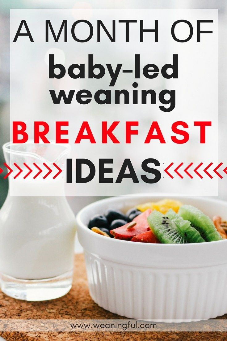 30+ baby led weaning breakfast recipes - WEANINGFUL
