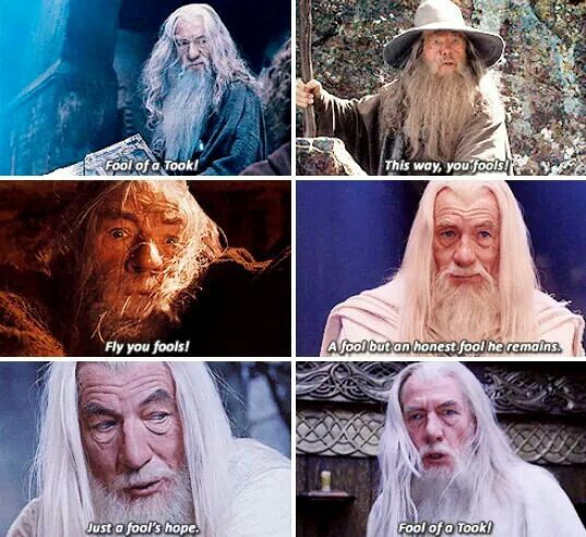 Gandalf. And fools.