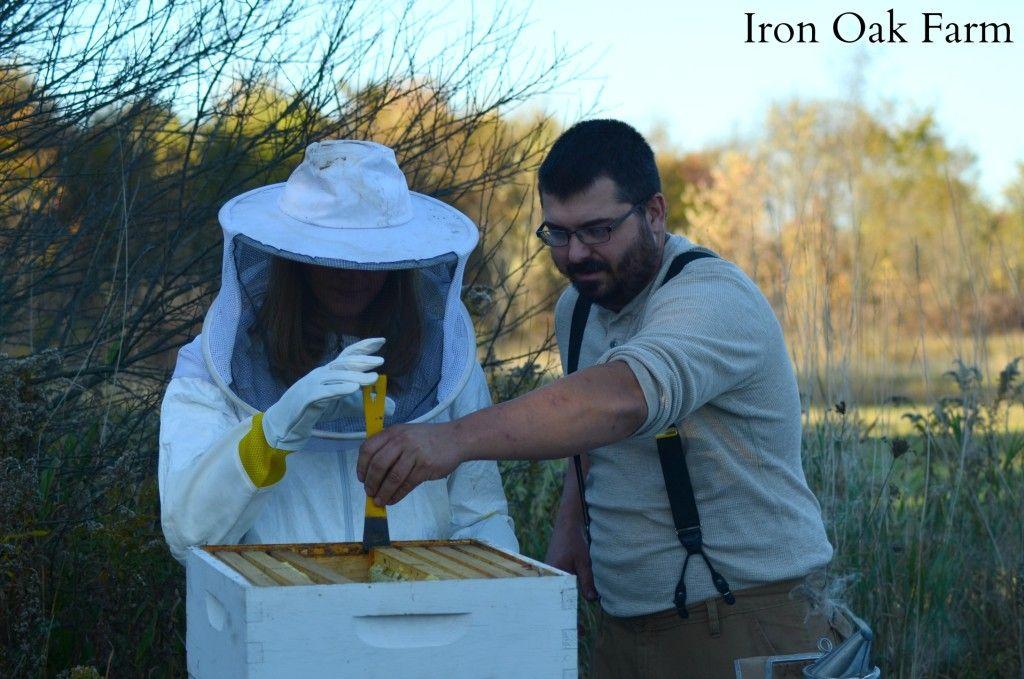 9 Ways Non-Beekeepers Can Help Pollinators in 2020   Bee ...