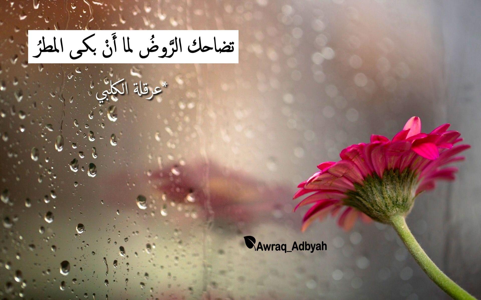 Pin By أوراق أدبية On أوراق أدبية أدب شعر اقتباسات Rain Wallpapers Rainy Day Wallpaper Rain Pictures