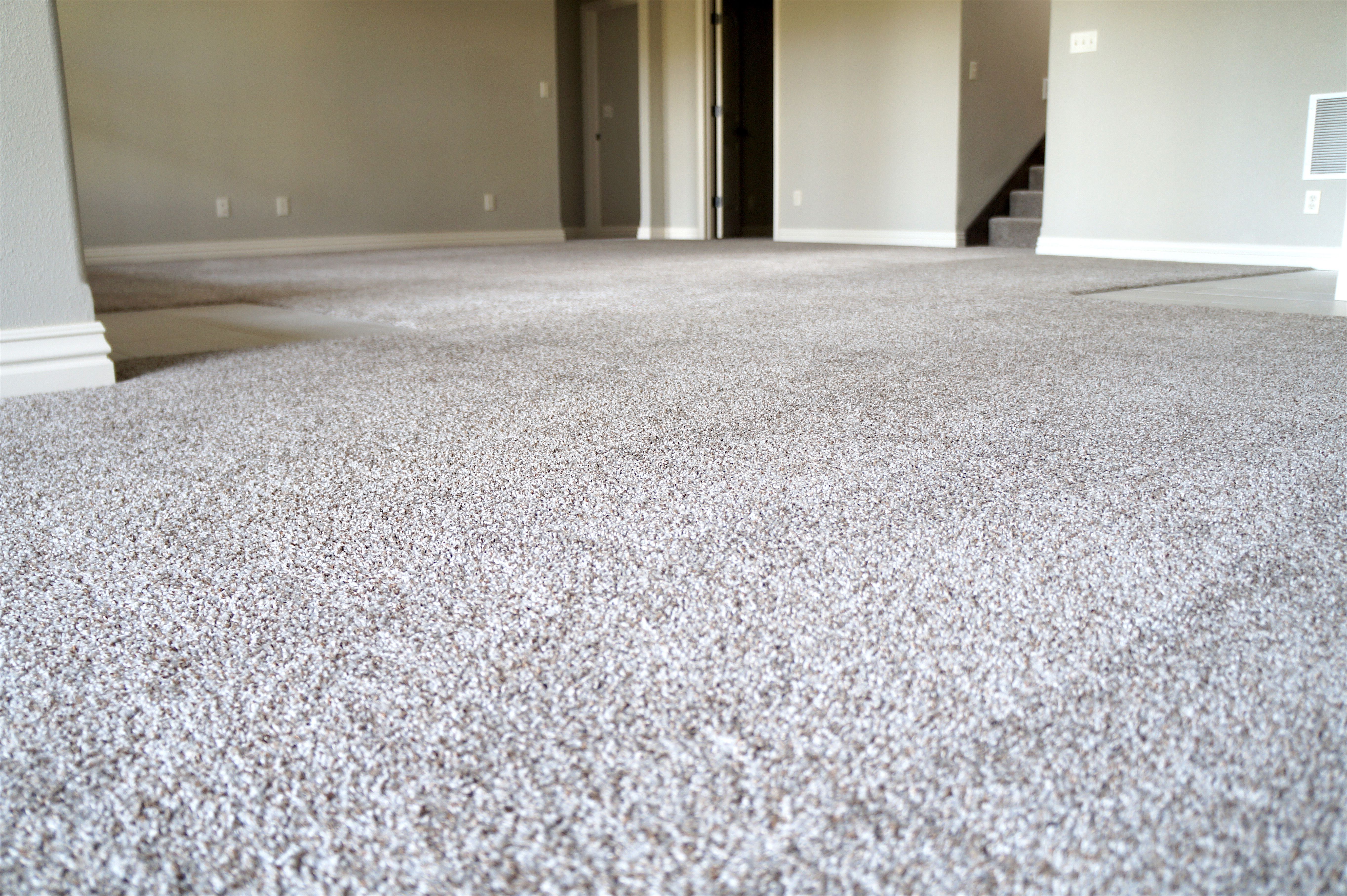 Springfield Sessel Festival Gravel Is Just One Of Many In Stock Carpet Options At