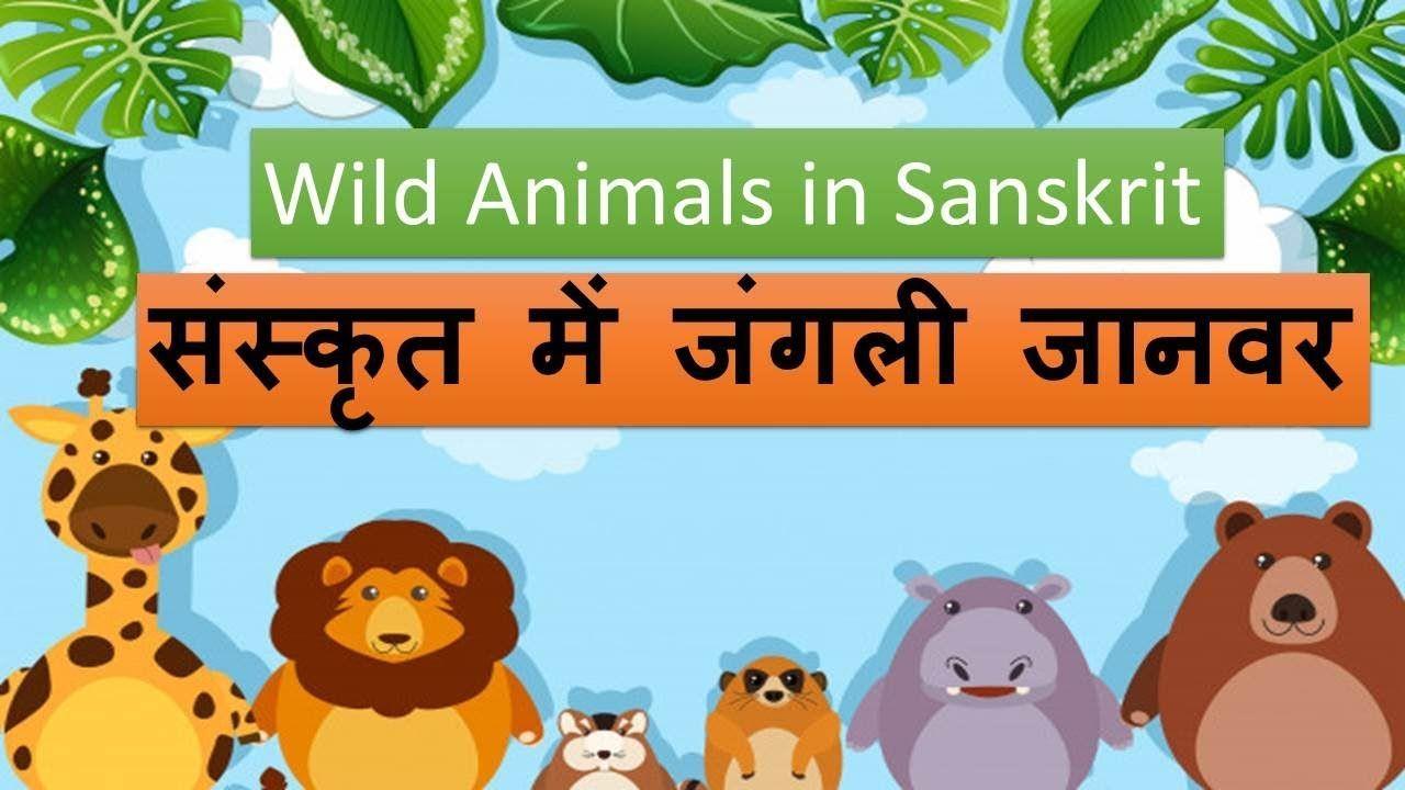 संस्कृत में जंगली जानवर (Wild Animals in Sanskrit