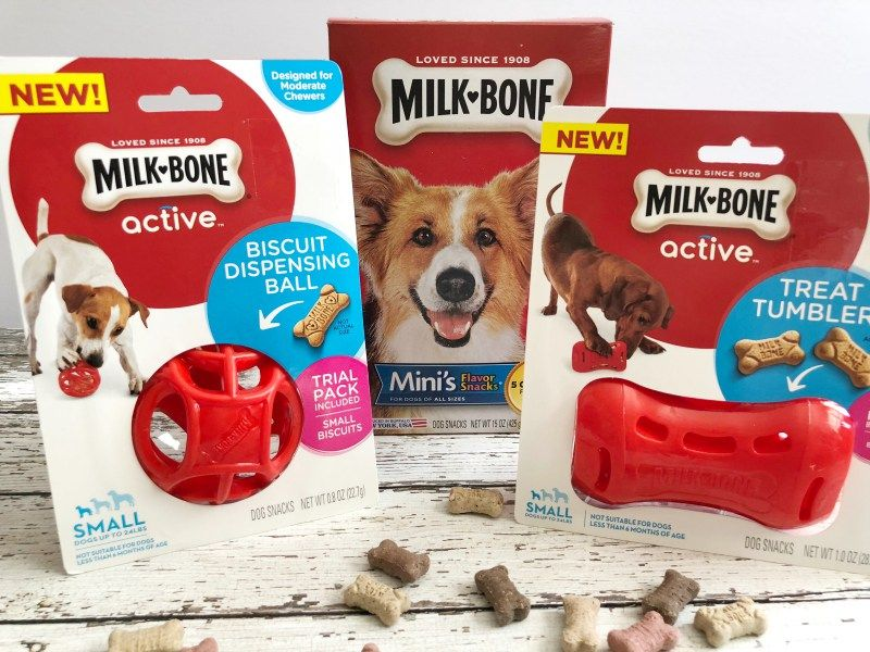 What Do Nike And Georgie Think Of Milk Bone Active Toys Dog Mom