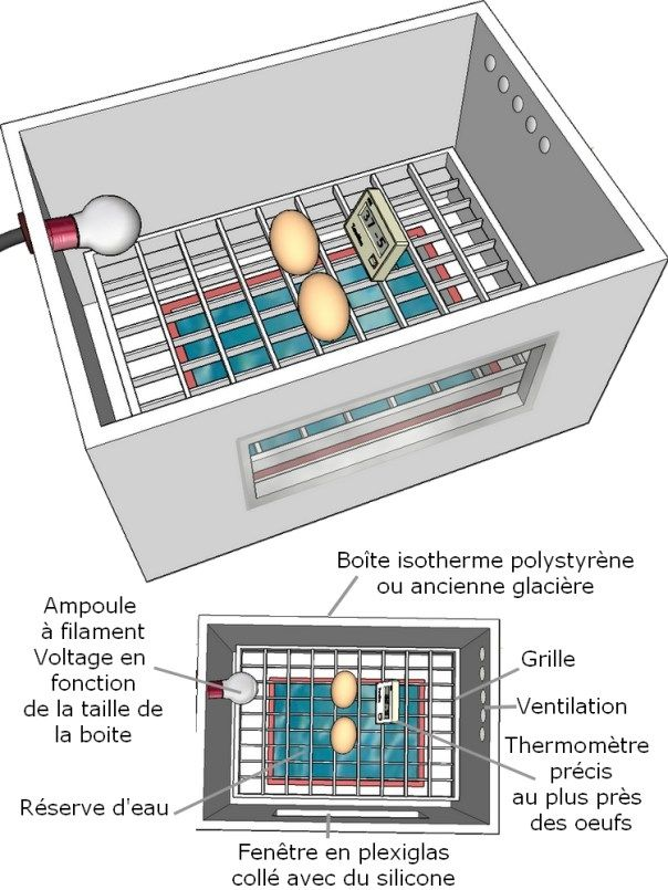 Plan d 39 une couveuse artificielle faire soi m me 2 poulaillier bio pinterest - Fabriquer abreuvoir poule ...