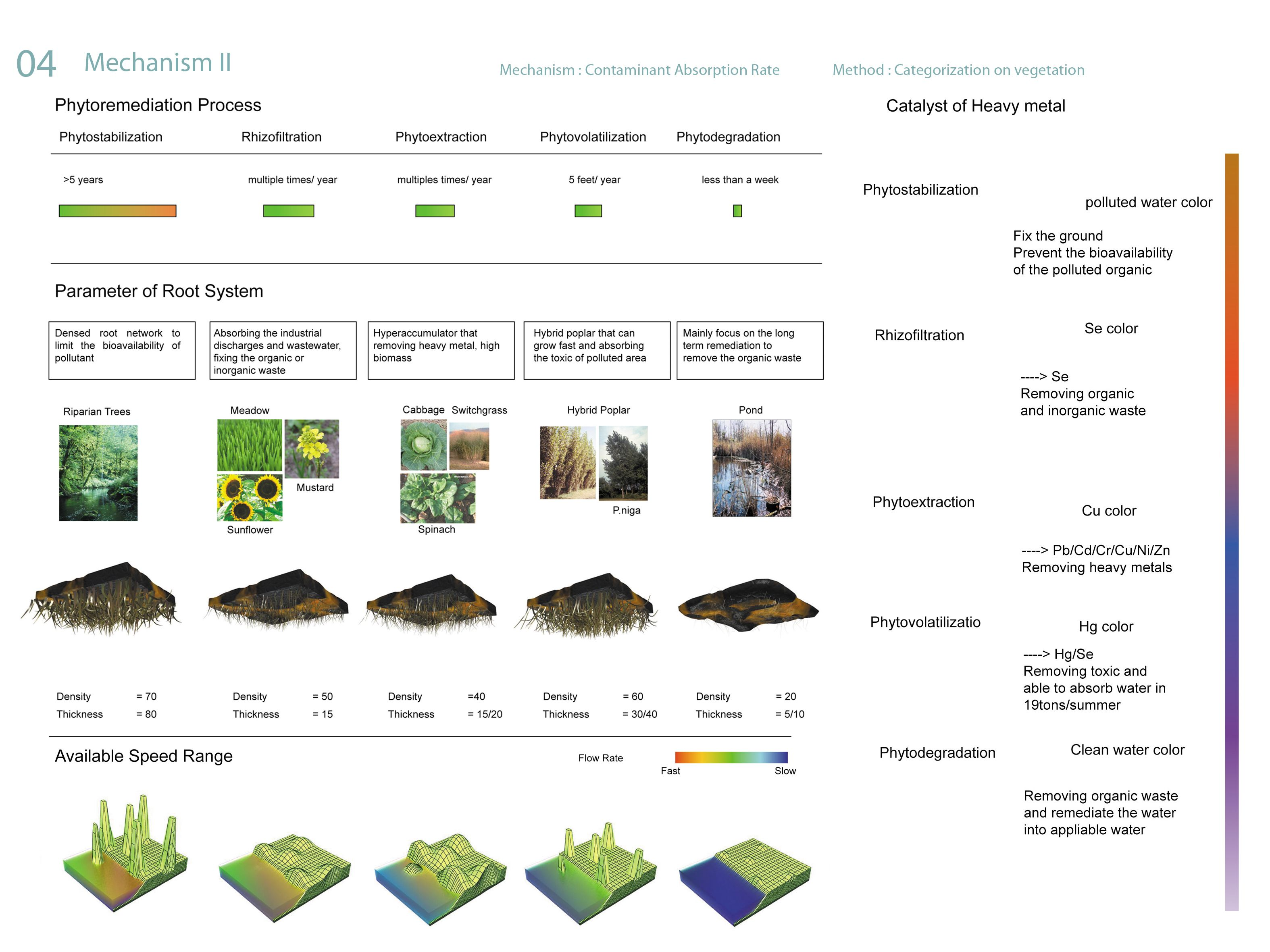 Phytoremediation is a bioremediation process that uses