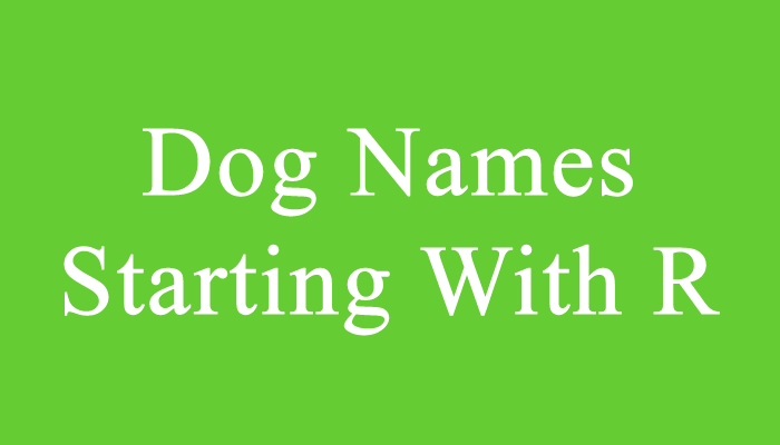 Dog Names Starting With R in 2020 Dog names, Cool