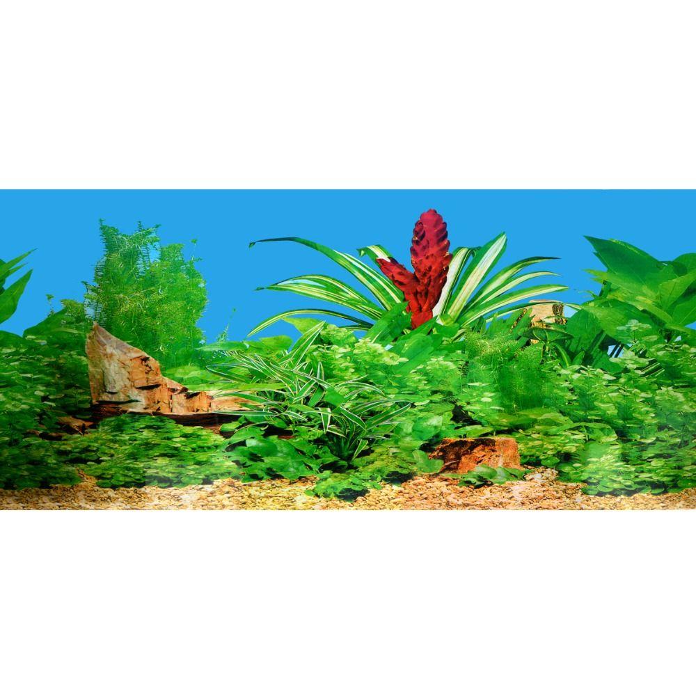 new 15030cm aquarium fish tank beautiful sticker decoration high definition background paper fish tank