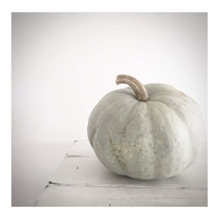 Pin By Creative Boutique Natural Home On Moodboard In 2020 White Pumpkins Pumpkin Simple Decor
