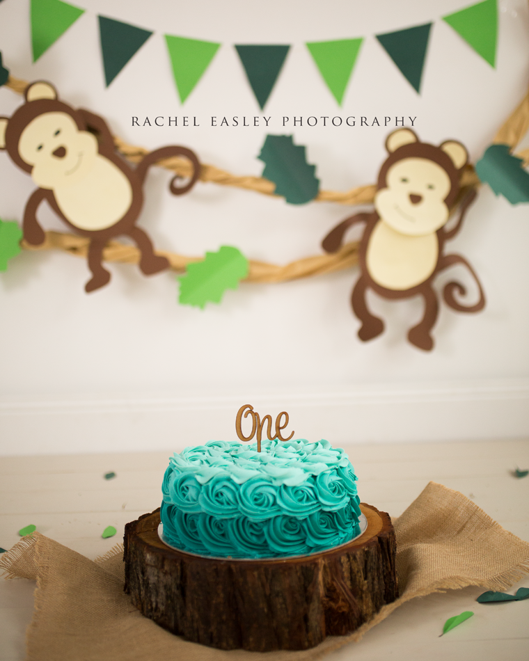 Brisbane Cake Smash Photographer Brisbane Maternity Newborn Baby Family Photography Organic P Smash Cake Boy First Birthdays Boys First Birthday Party Ideas