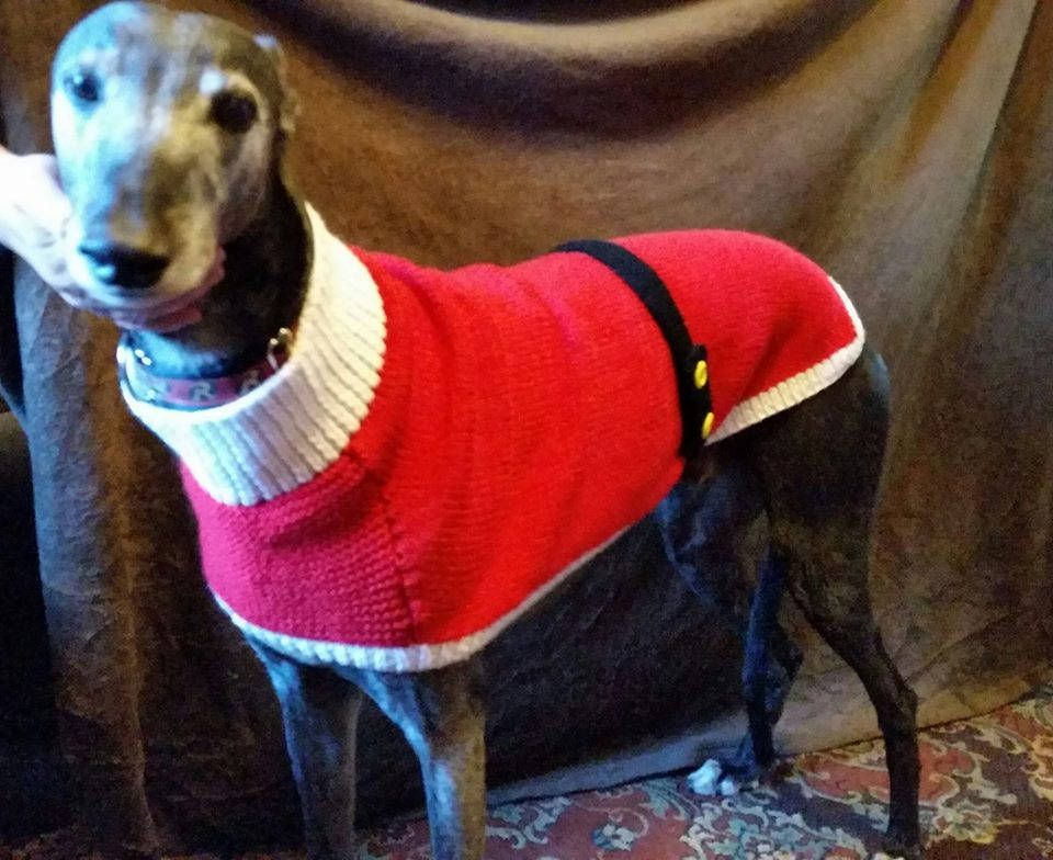 Greyhound Santa Coat Knitting Pattern Download by greyhounds4me on ...