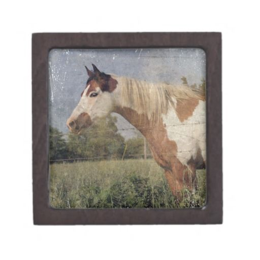 Pinto Horse Grunge Premium Jewelry Boxes