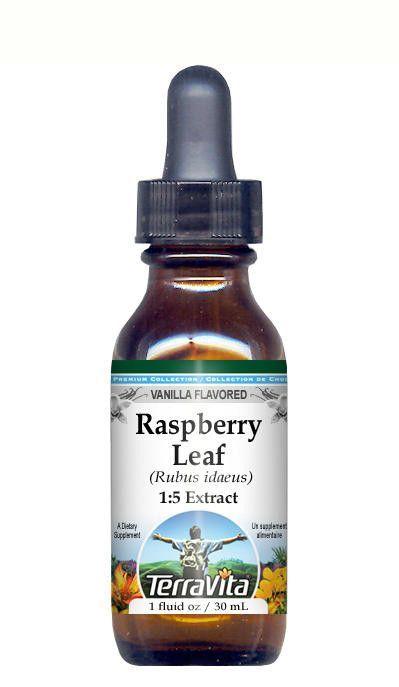 Raspberry Leaf Glycerite Liquid Extract (1:5) Vanilla Flavored