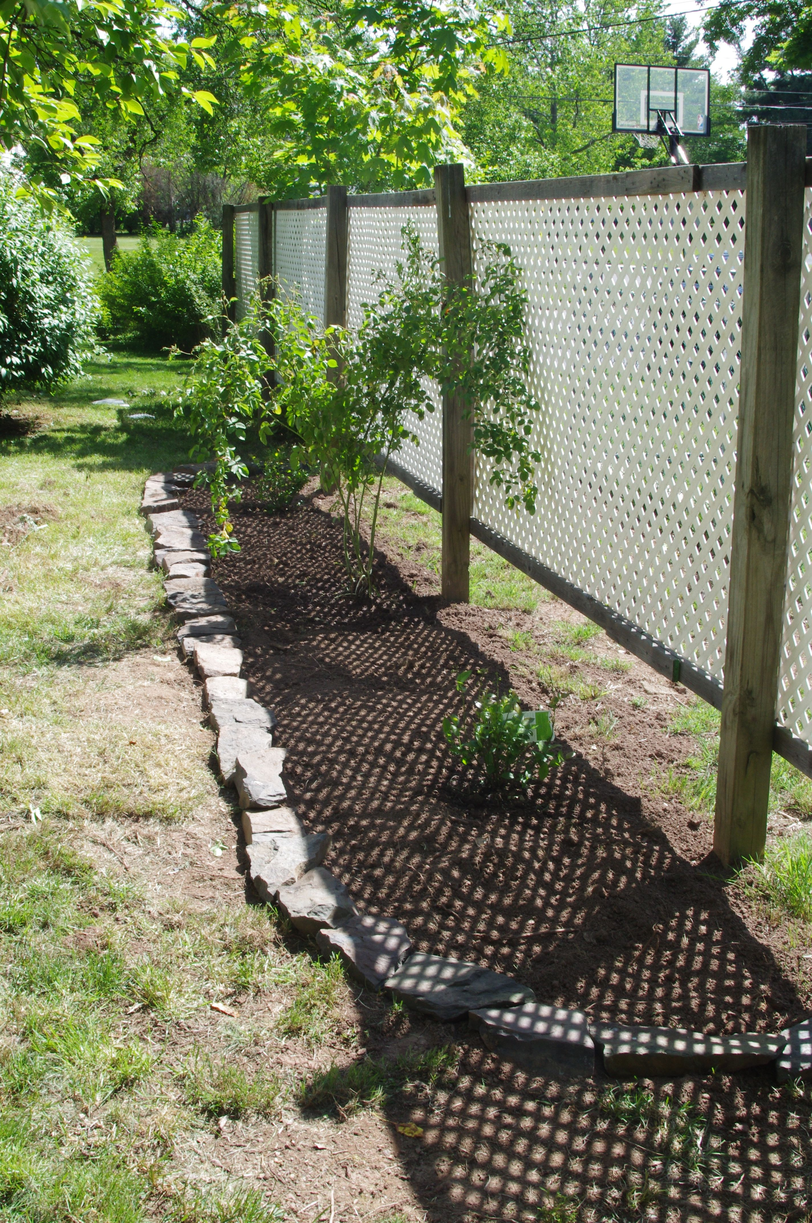 Vinyl lattice supported by posts to grow climbing plants on or to
