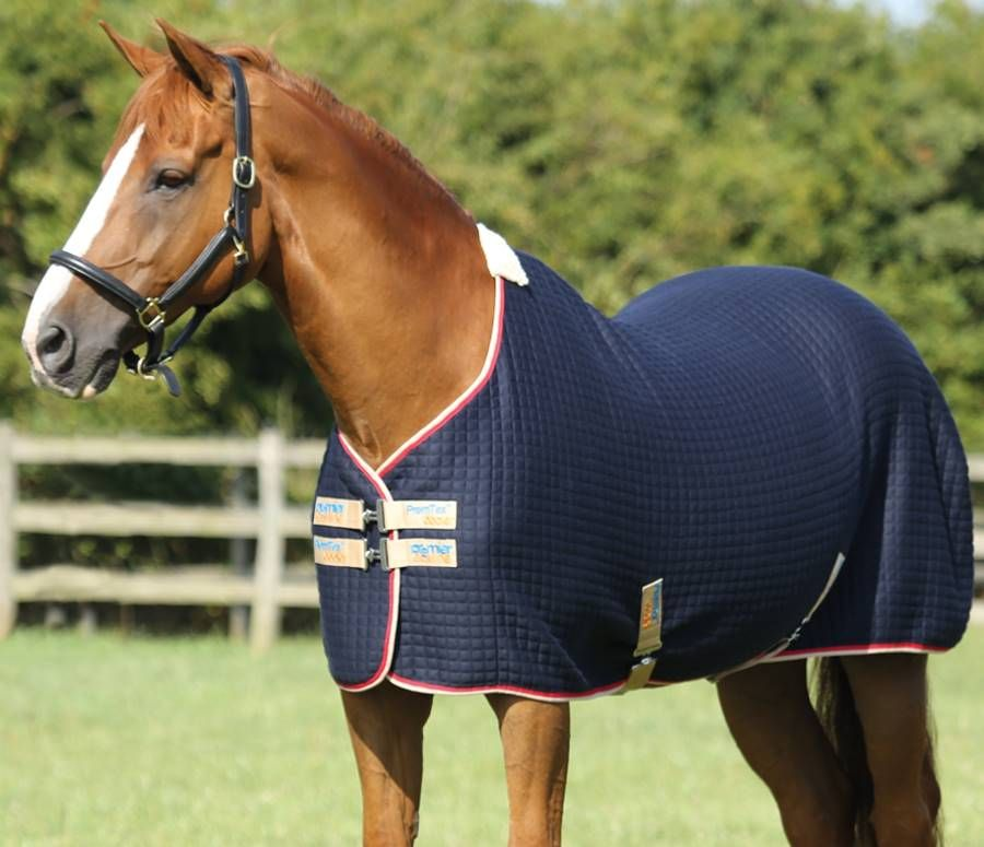 The Premtex Horse Cooler Rug Provides High Tech Cooling And