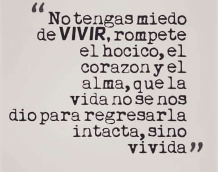 Vivir-Vivida.