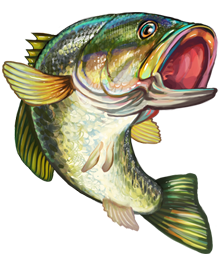 Big Walleye Fish Cake Images