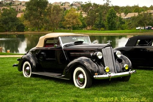 1937 Packard 115C Convertible | Vintage Cars | Cars