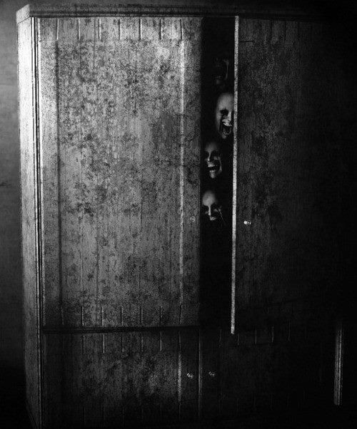stay in the closet..or the wardrobe Black and white and