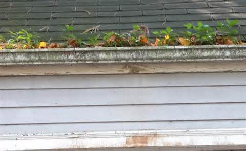 Gutter Services Where S All That Water Going Cleaning Gutters Gutter Gutter Services