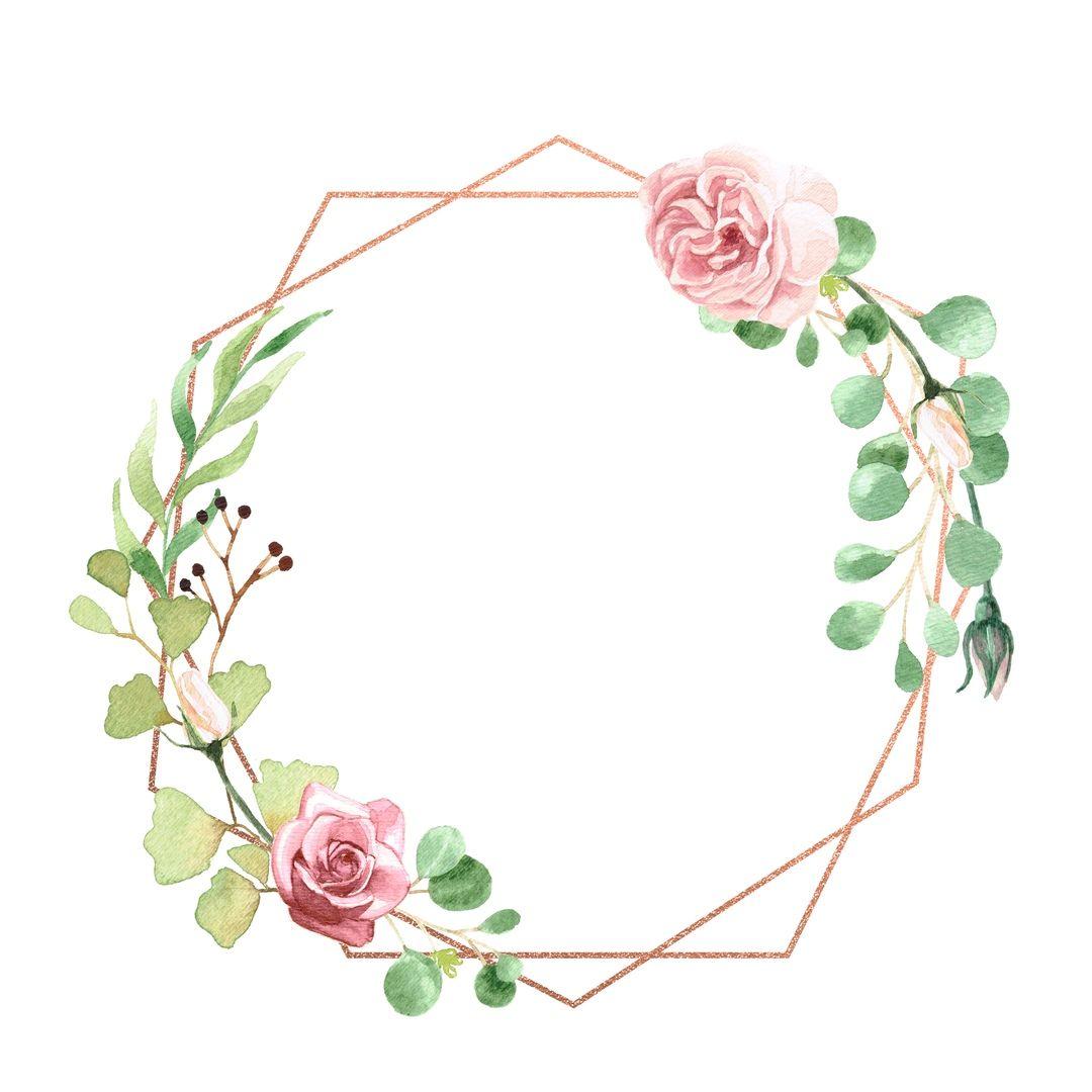 Sciana Cvetochnye Illyustracii Cvetochnyj Narisovat Cvety