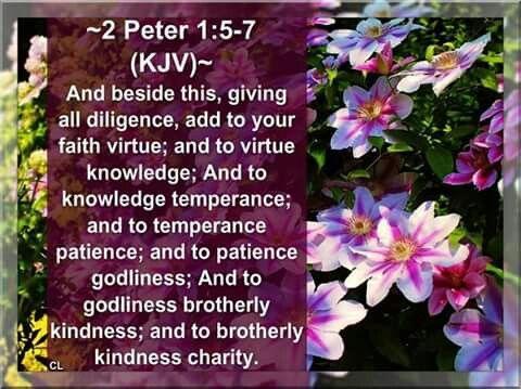 Pin on King James Bible Verses