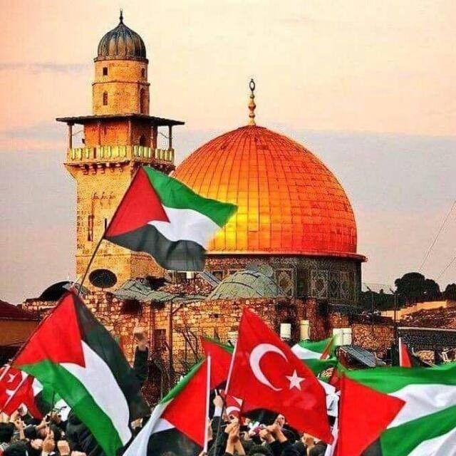 Free palestine ☪`☪`☪   Palestine, Beautiful photo, Taj mahal