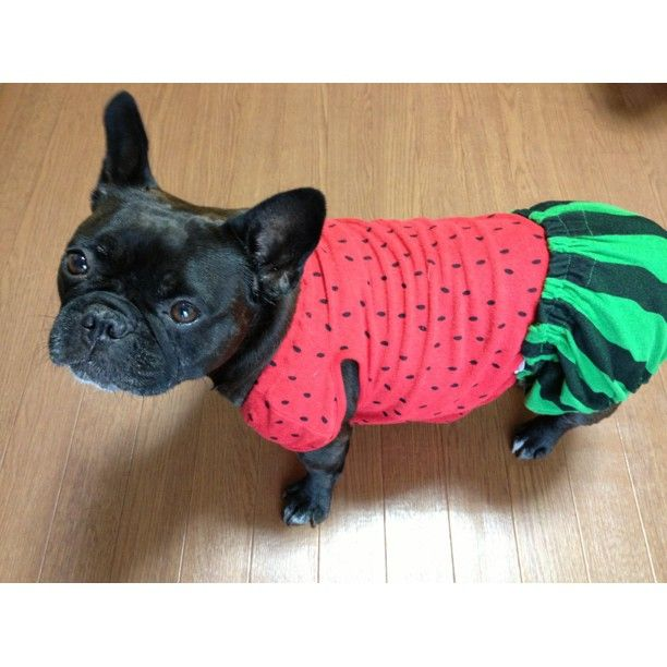 If you dress me up as a watermelon one more time...